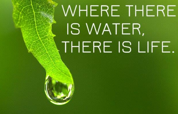 See the benefits of ionized water.